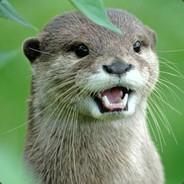 OtterIsCool