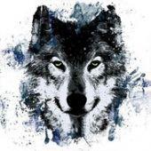 Flutterwolf