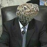 LizardParadise